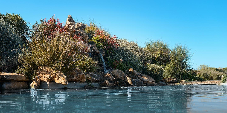 Il laghetto delle Tenute Delogu